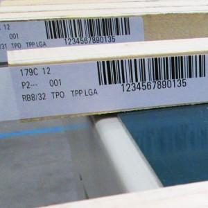 esempio etichette personalizzate