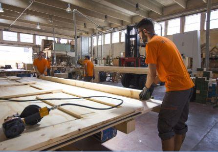 cursal-legno brin-tvm 500 (2)